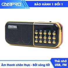 Radio mini nghe đài, nghe nhạc thẻ nhớ, USB, nghe kinh phật Craven-25A