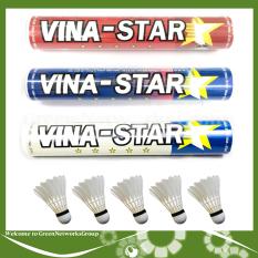 Cầu lông Vina Star , ống 12 quả Greennetworks