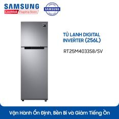 Tủ lạnh Digital Inverter Samsung RT25M4033S8/SV (256L)