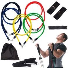 Sale Sỉ-Bộ Dây Tập Gym Ngũ Sắc Đàn Hồi Cao Cấp – Dây đàn hồi tập thể hình – dây tập kháng lực