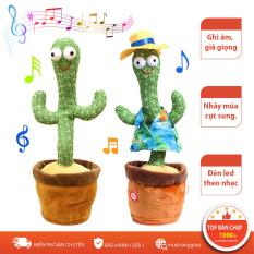 Xương rồng nhảy múa nhái tiếng, cây xương rồng uốn éo, xương rồng múa, cây xương rồng nhảy múa đồ chơi vui nhộn cho bé giải và giải trí giảm stress