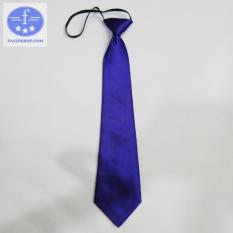 Cà vạt nam nữ thắt sẵn Faciochop C03