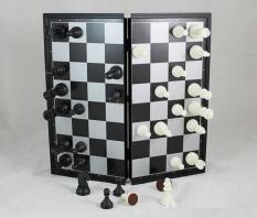 Bàn cờ vua nam châm – 2020