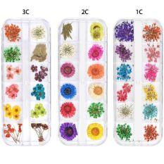 Hộp hoa khô 12 màu trang trí trang sức resin