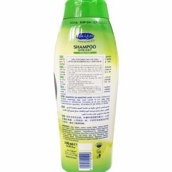 Dầu gội cao cấp cho tóc dầu chiết suất tinh chất trà xanh Jacklon Italy 500ML