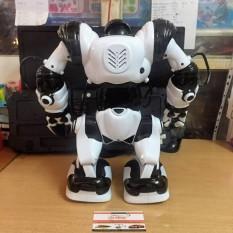 Đồ chơi điều khiển từ xa thông minh, robot jia qi tt323