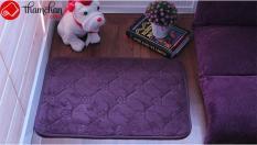 Thảm chùi chân trang trí sang trọng size 40-60 (mã 001)