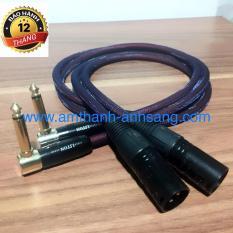 Dây tín hiệu âm thanh jack Canon đực sang jack 6.5 ly cong 02 dây