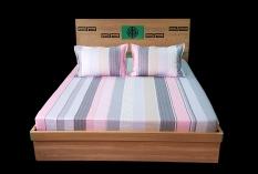 Bộ ga chun 1.6x2m bằng vải cotton chất lượng (Sản phẩm công ty MYM)