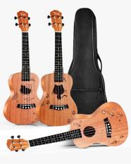 Đàn Ukulele Concert tặng kèm phụ kiện – Bao, Capo, Móng Gẩy, Dây đeo, Dây đàn – Uku Gỗ Mahogany trơn cỡ trung 23 inch