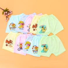 Combo 10 quần đùi cotton in hình đáng yêu cho bé