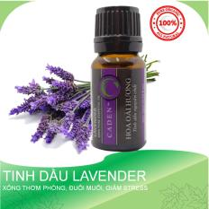 Tinh Dầu Lavender Hoa Oải Hương, Tinh Dầu Xông Phòng Đuổi Muỗi và Côn Trùng