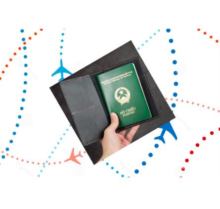 Bao đựng Passport da bò – Nhiều ngăn đựng PP001