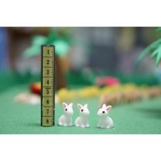 Thỏ Trắng Trang Trí Nhà Búp Bê Tiểu Cảnh Bonsai Charm Slime