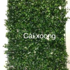 Combo 10 thảm cỏ cải xoong trang trí sự kiện cửa hàng