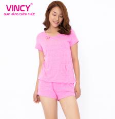 BỘ SHORTS THUN Vincy BST040W01
