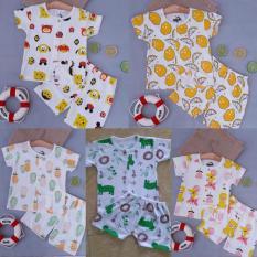 set 5 bộ cộc tay cài cúc giữa hình hoa quả
