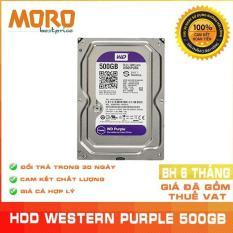 Ổ cứng Camera WD Purple 500GB – Nhập khẩu từ Nhật Bản, Hàn Quốc – Bảo hành 6 tháng 1 đổi 1