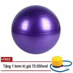 Bóng tập Yoga trơn 75cm Sportmax – Màu Tím + Tặng 1 bơm tay mini