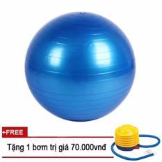 Bóng tập Yoga Trơn 75cm Sportmax – Màu Xanh + Tặng 1 bơm tay mini