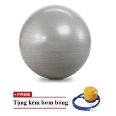 Bóng tập yoga, thể dục trơn – size65 (Ghi)