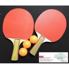 Buy vợt bóng bàn at Best Price in Vietnam LY-5417 + Tặng bộ 3 bút bi xóa được