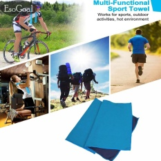 EsoGoal Cooling Towel, Instant Icy Cooling Chilly Towel for Sports, Workout, Fitness, Gym, Yoga, Pilates, Travel, Camping & More (Blue) – intl