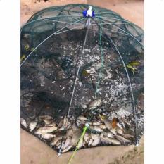 Lưới đánh bắt cá bát quái thông minh 8 cửa