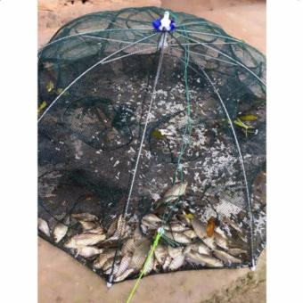Lưới đánh bắt cá bát quái thông minh 8 cửa - 8626726 , OE680SPAA6ERM3VNAMZ-11818392 , 224_OE680SPAA6ERM3VNAMZ-11818392 , 119000 , Luoi-danh-bat-ca-bat-quai-thong-minh-8-cua-224_OE680SPAA6ERM3VNAMZ-11818392 , lazada.vn , Lưới đánh bắt cá bát quái thông minh 8 cửa