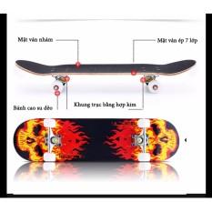 Ván trượt Skate Board trẻ em loại lớn (Trên 10 tuổi)