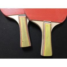 Vợt bóng bàn giá rẻ kèm 3 bóng LY-5417- Dụng cụ tập thể dục,thể thao Bộ 2 vợt bóng bàn tặng kèm 3 bóng cao cấp