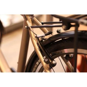 Xe đạp đường phố GIANT Escape 2 City - Size S (Vàng đồng)