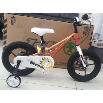 Xe đạp trẻ em Royal Baby RB14-B21 (Cam)