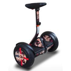Xe điện cân bằng HOMESHEEL MINI PRO 9 USA