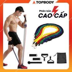 Bộ 5 dây ngũ sắc tập full body tại nhà – dụng cụ tập gym, dây tập thế thao tại nhà TOPBODY – D5MAU02