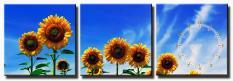 Tranh treo tường – Hoa Nắng – Tranh Minh Hiền (3 TRANH GHÉP)