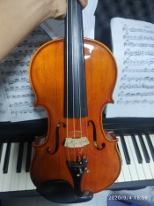 Đàn violin Lavocado En RoseIt, cấu tạo của sản phẩm: mặt thông lưng , hông maple peg, fingerboard , tail ebonystring