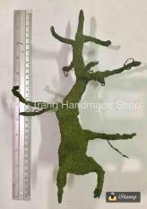 Gốc bonsai