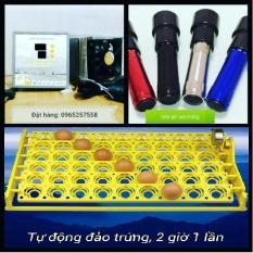 Máy ấp trứng gà mini ánh dương P100 + Khay đảo tự động + Đèn pin soi trứng