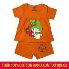 (Ảnh thật shop chụp) bộ đồ ngắn tay bé gái chất liệu 100% cotton 4 chiều ( có quần và áo)