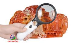Kính lúp cầm tay 3X-45X MG6902AB đa năng giá tốt