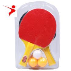 Combo 2 Vợt bóng bàn A400 sản phẩm của Regail
