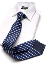 Cà vạt lụa TLG bản vừa 206009-4 (Xanh)