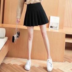 chân váy xếp ly thời trang ROBIN