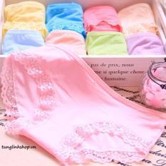 Bảng Báo Giá combo 10 quần lót nữ viền ren chất cotton cao cấp MODAL  Moreplus