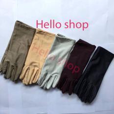 Combo 5 đôi Găng tay màu 3 tấc co giãn, thoáng mát phù hợp cho các bạn học sinh, sinh viên, nhân viên văn phòng (Màu sắc giao ngẫu nhiên)