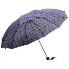 Dù chịu nắng mưa chống tia tử ngoại kẻ Caro 3023B