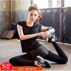 Set đồ tập gym nữ form Hàn Quốc