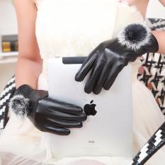 Tất tay da nữ mùa đông cảm ứng điện thoại (Đen)