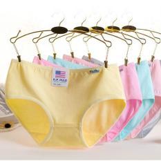 10 quần lót nữ Cotton HP PuLo( kèm video)